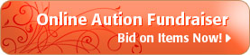 auction-button