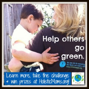 Holistic Living Challenge - Holistic Moms Network